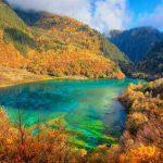 22 Five Flower Lake, China