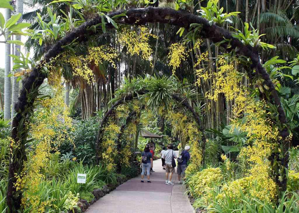 Botanic Gardens, Singapore - by alantankenghoe/Flickr