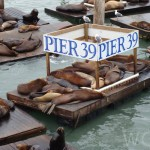 Fisherman's Wharf, San Francisco - by WOW Travel