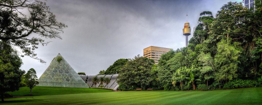 Royal Botanic Gardens, Sydney - by Robert Montgomery:Flickr