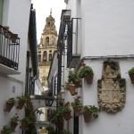 Calleja de las Flores, Cordoba - by Jose Gonazelz:Flickr