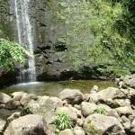 Manoa Falls, Honolulu - by Amanda - spakattacks:Flickr