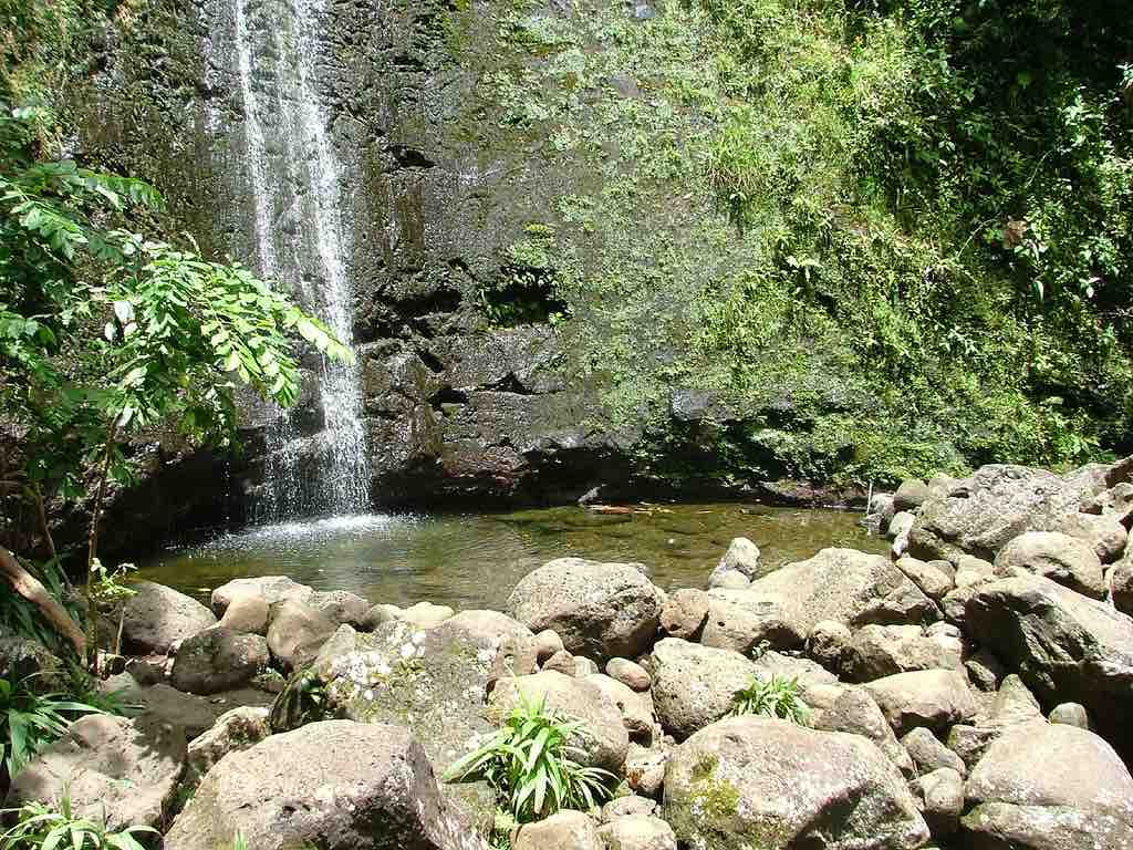 Manoa Falls, Honolulu - by Amanda - spakattacks:Flickr