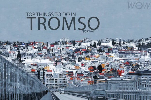 Top 9 Things To Do In Tromso