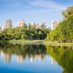 Ibirapuera Park, Sao Paulo Mario Camargo - MarioCamargo:Flickr