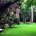 Jardin Botanico, Caracas - by ruurmo:Flickr