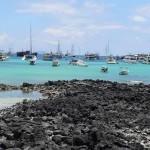 Puerto Ayora, Galapagos - by A Flores Lópe:Wikimedia