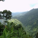 Strawberry Hill, Jamaica - by Kristopha Hohn - seishin17:Flickr