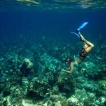 Andros Island, The Bahamas - by Sean Nash - nashworld:Flickr