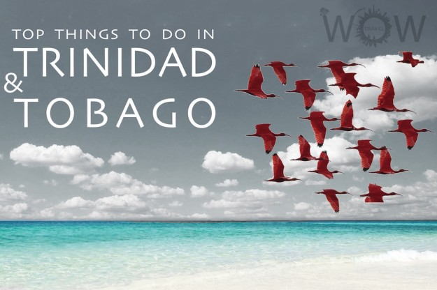 Top 6 Things To Do In Trinidad And Tobago