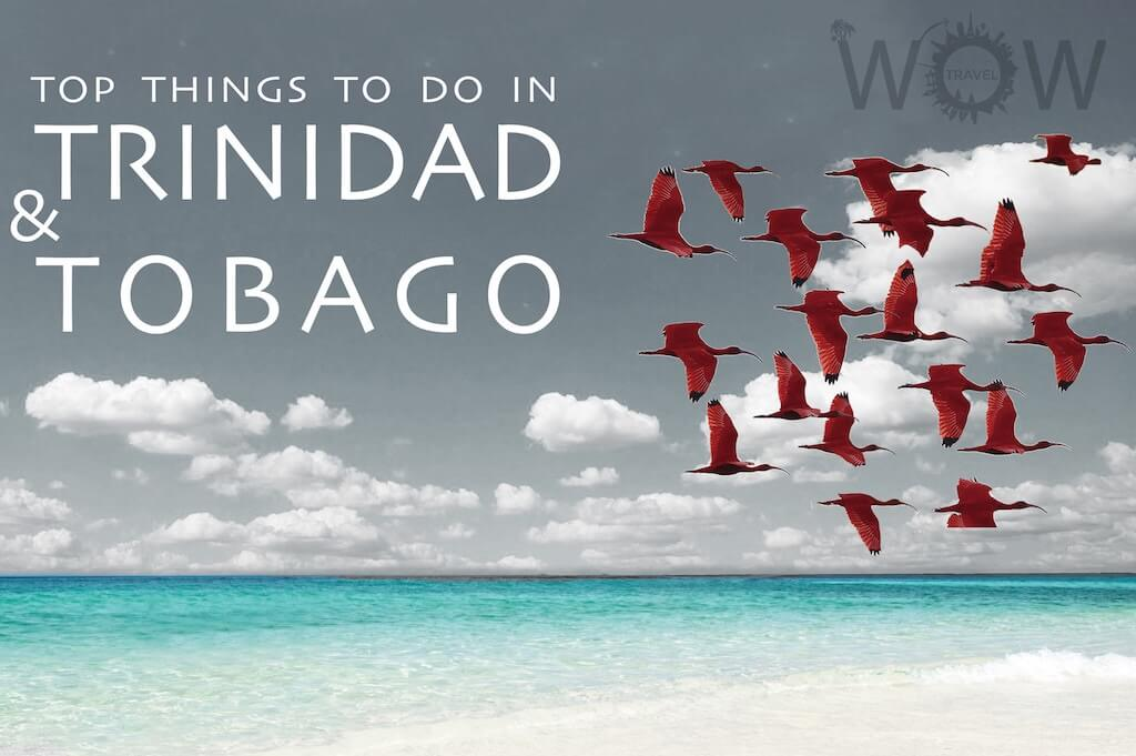 Top Things to Do in Tobago