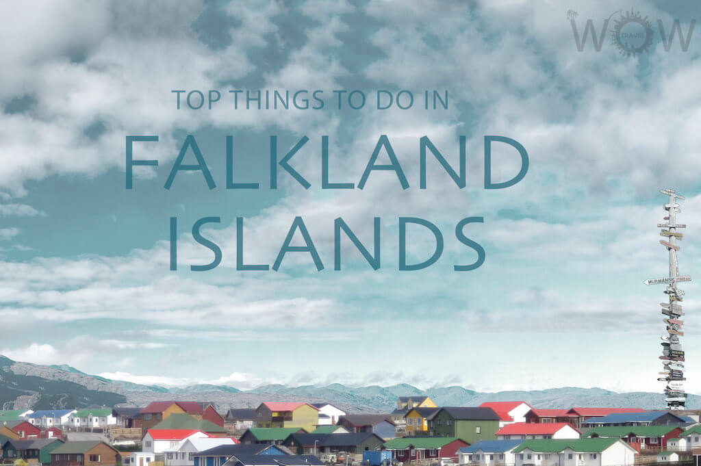 Top 6 Things To Do in Falkland Islands