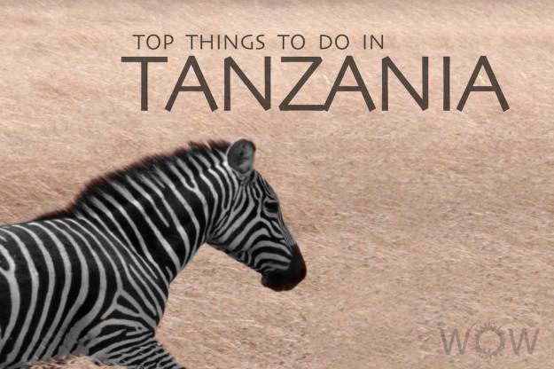 Top 9 Things To Do In Tanzania