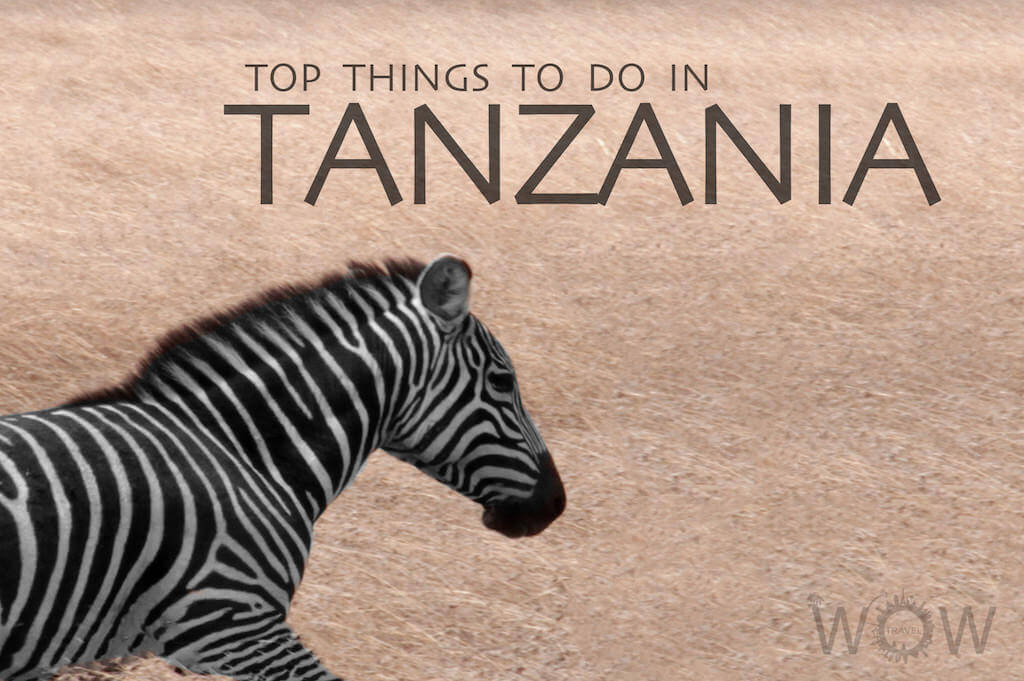 Top 9 Things To Do In Tanzania