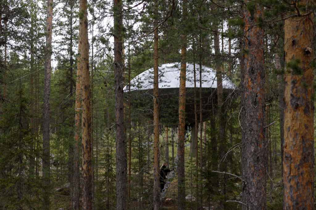 Treehotel, Harads, Sweden - by Gitta Wilén :Flickr