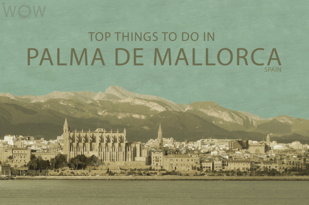 Top 9 Things To Do In Palma de Mallorca