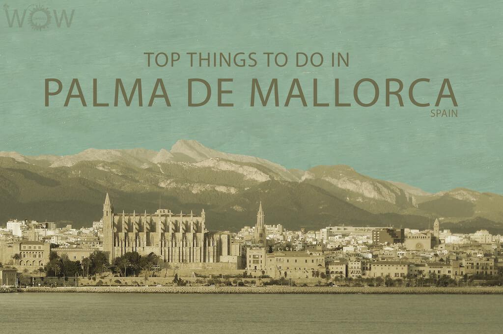 Top 9 Things To Do In Palma de Mallorca