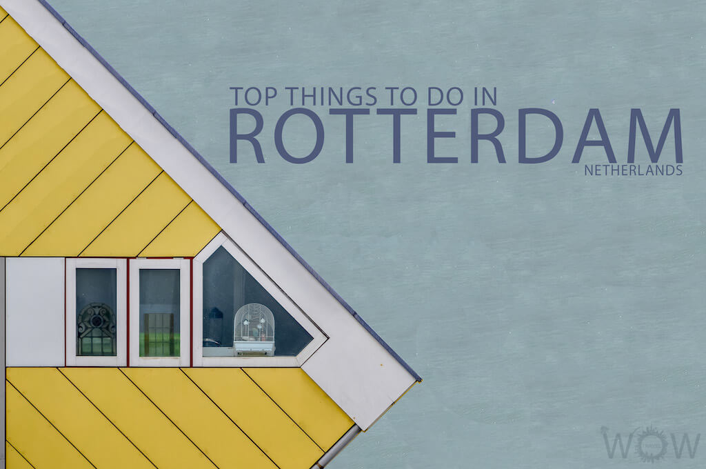 Top 9 Things To Do In Rotterdam