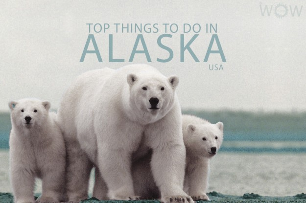 Top 9 Things To Do In Alaska