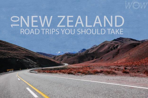 10 New Zealand Road Trips You Should Take