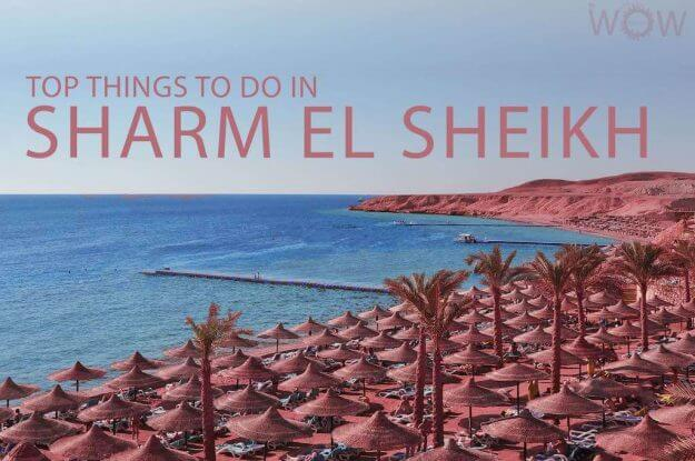 Top 11 Things To Do in Sharm El Sheikh