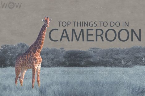 Top 10 Things To Do In Cameroon
