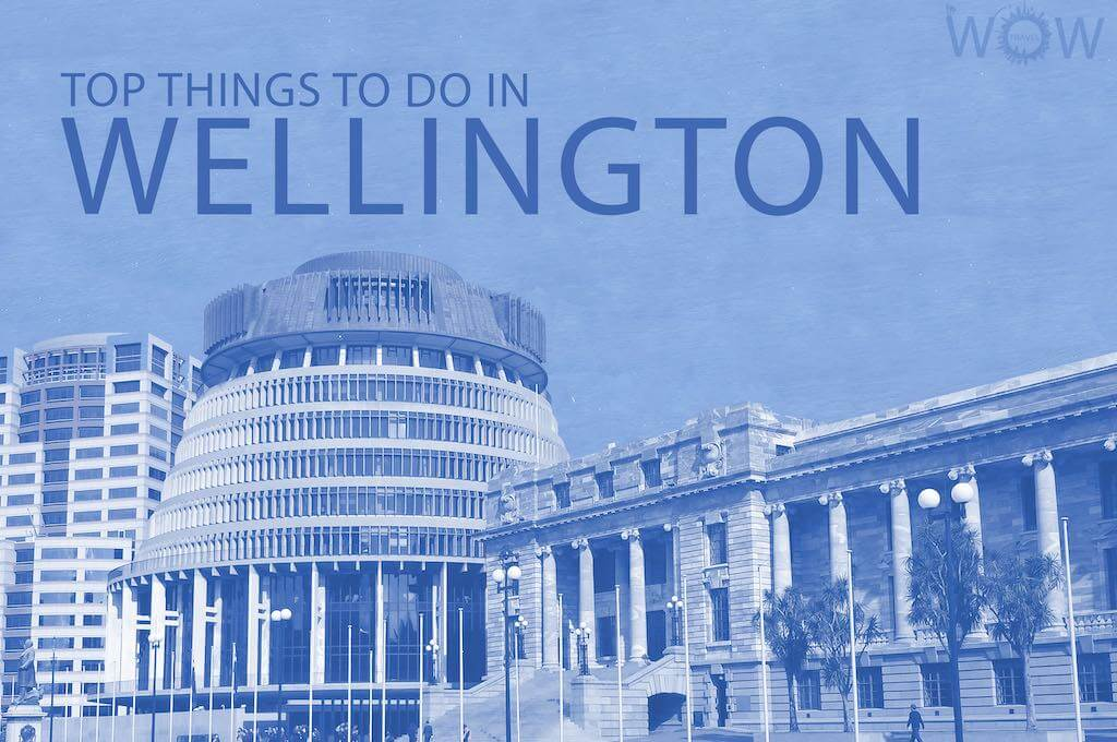 Top 12 Things To Do In Wellington