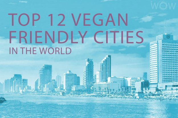 Top 12 Vegan Friendly Cities In The World