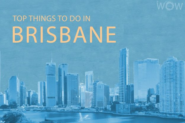 Top 12 Things To Do In Brisbane