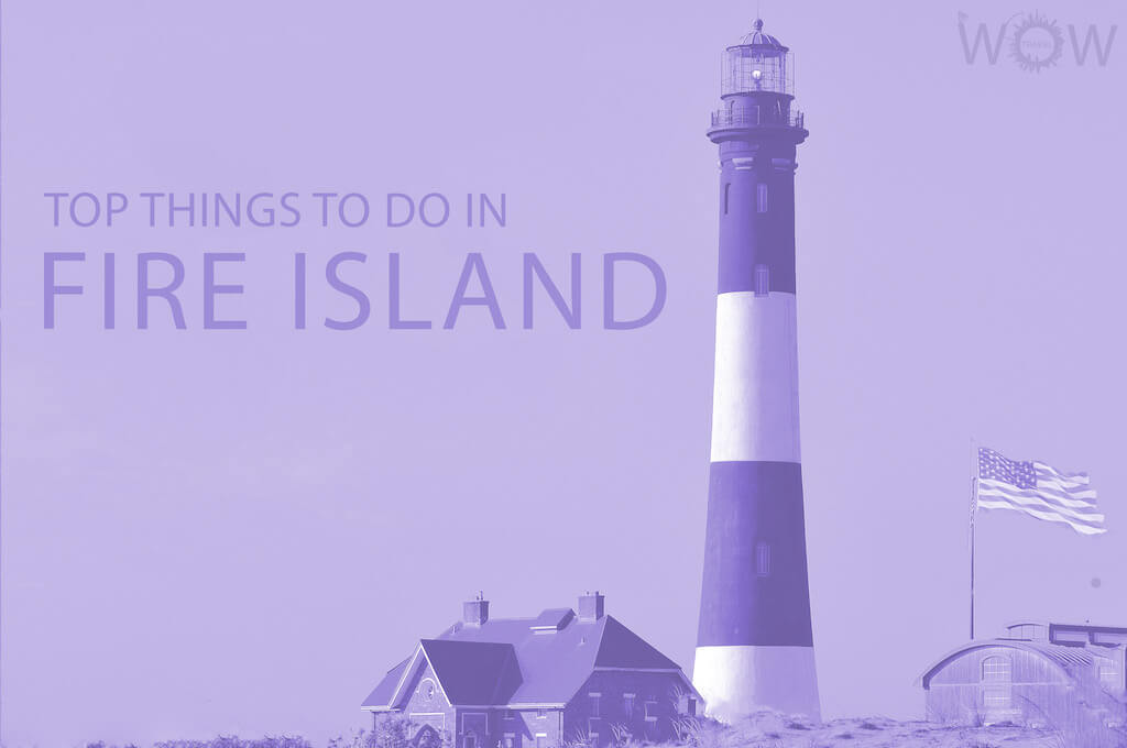 Top 9 Things To Do In Fire Island