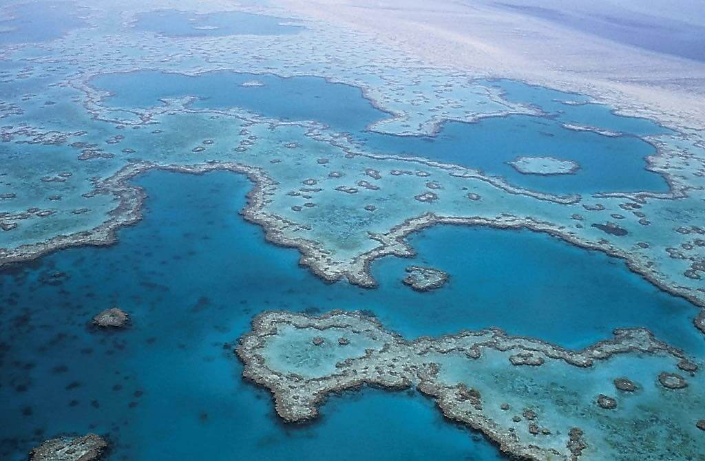 The Great Barrier Reef,Cairns, Queensland, By 127071 : pixabay.com