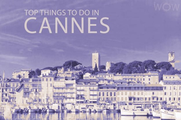Top 12 Things To Do In Cannes