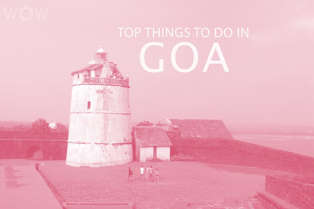 Top 12 Things To Do In Goa