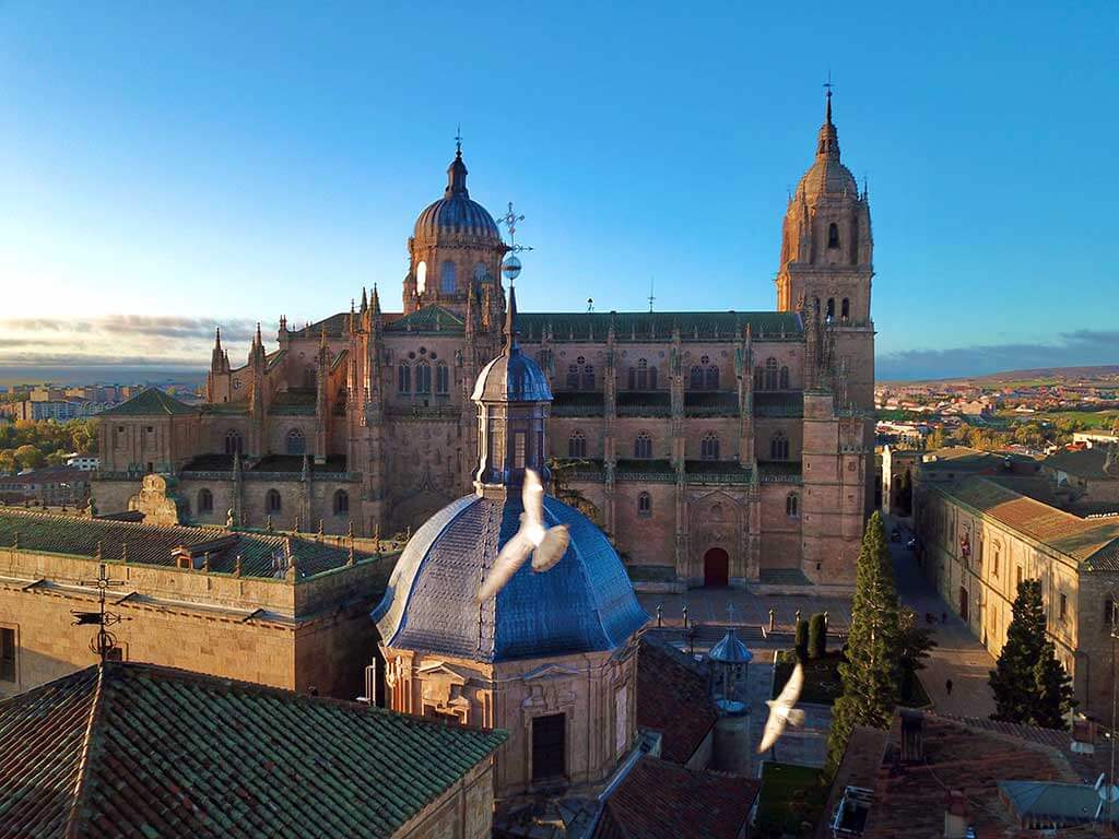 Birds in flight near the New Cathedral, Salamanca - by WOW Travel