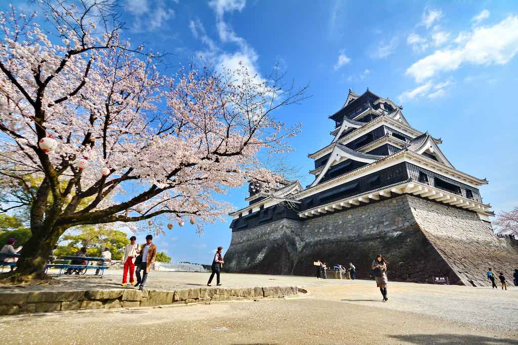 Fukuoka castle during full bloom of cherry blossom - by Jarung H : Shutterstock.com
