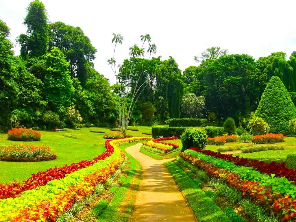 Royal Botanical garden Peradeniya, Sri Lanka
