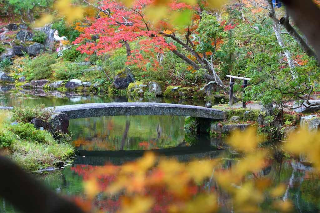 Isui-en Garden, Nara / Shutterstock.com