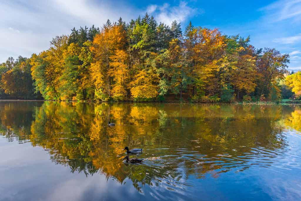 Lake Thal, Near Graz / Shutterstock.com