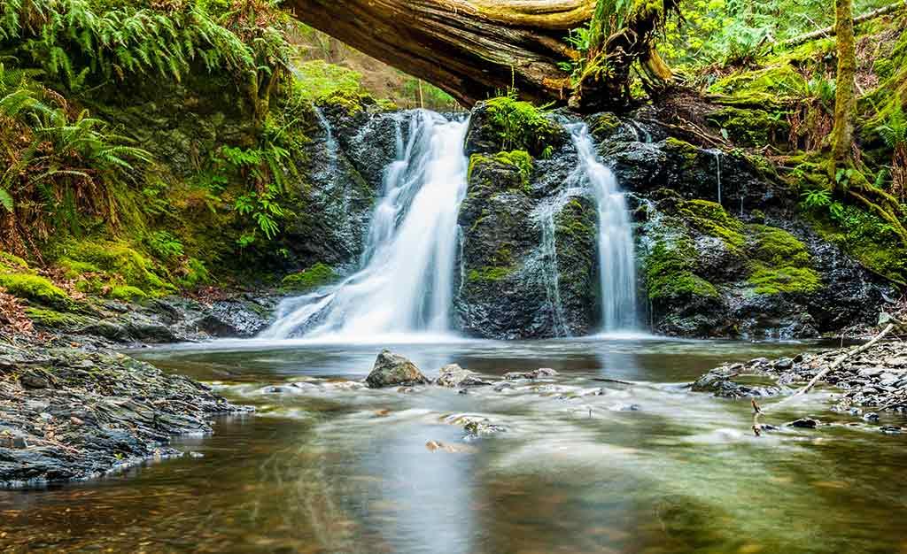 Moran State Park, Washington State - by WestBoundary Photography chris gill / Unsplash.com