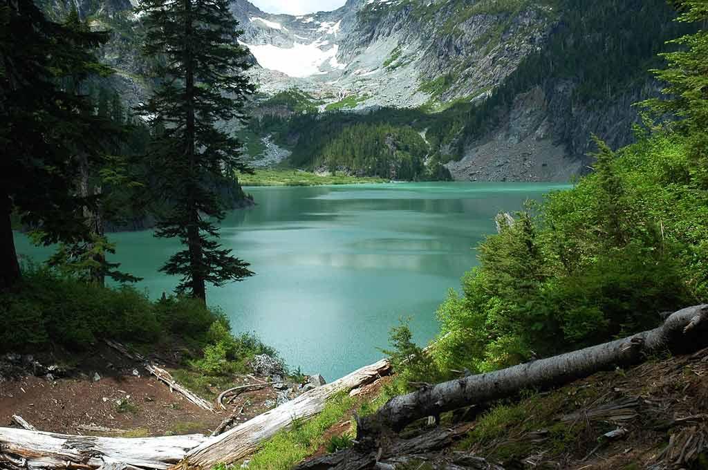 Mount Baker-Snoqualmie National Forest, Washington State - by skeeze / Pixabay.com