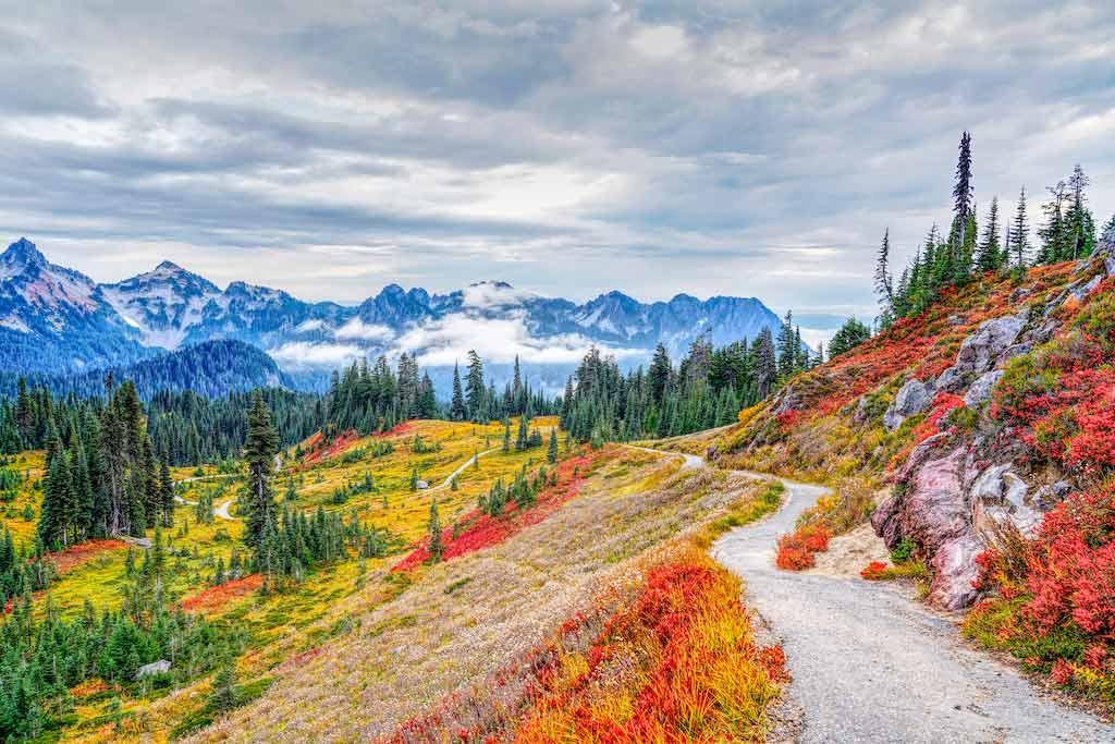 Mount Rainier National Park, Washington State / Shutterstock.com