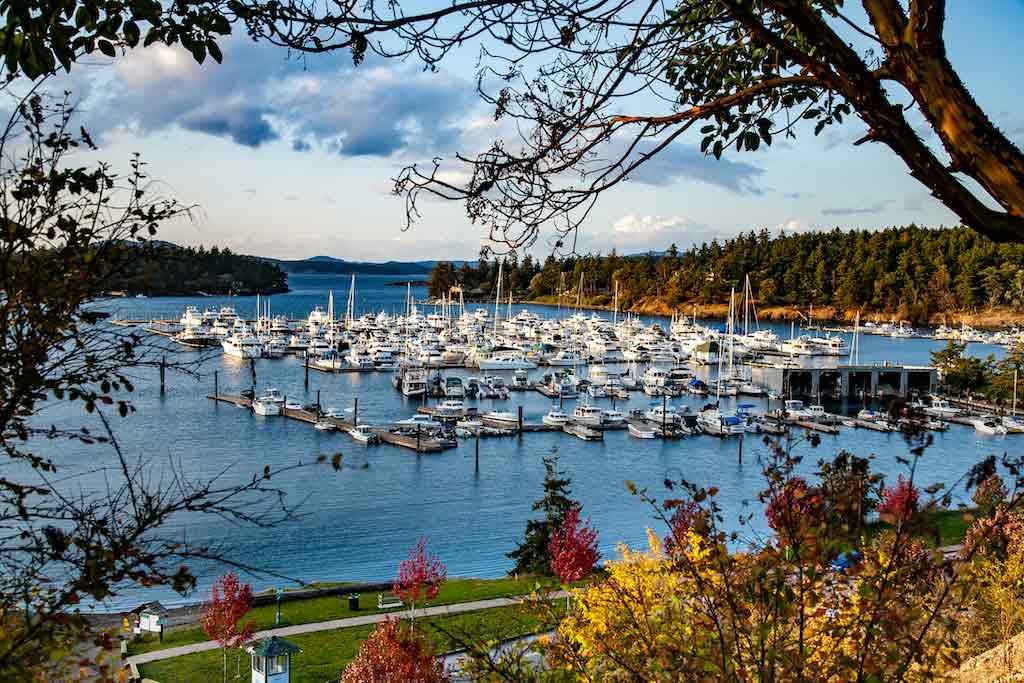 San Juan Island, Washington State - by Bob Pool / Shutterstock.com