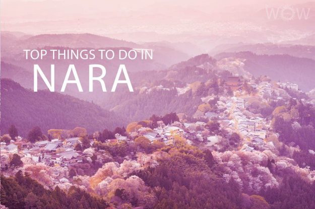 Top 10 Things To Do In Nara