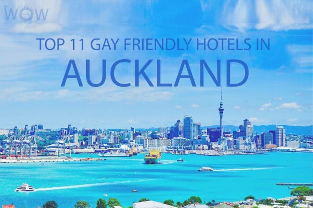 Top 11 Gay Friendly Hotels In Auckland