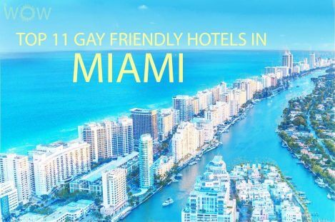 Top 11 Gay Friendly Hotels In Miami