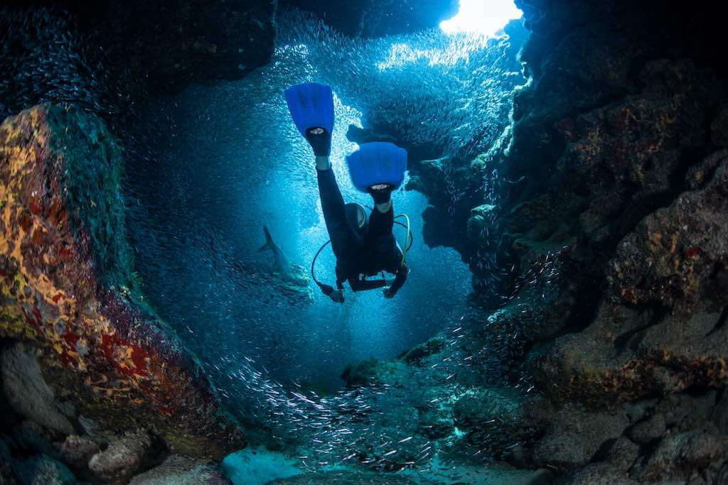 A diver explores the cracks, crevices and holes in a coral reef on the island of Grand Cayman