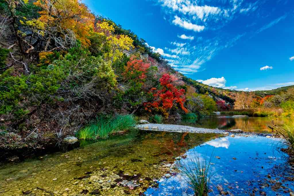 Beautiful Fall Foliage Surrounding the Crystal Clear Sabinal River at Lost Maples State Park, Texas
