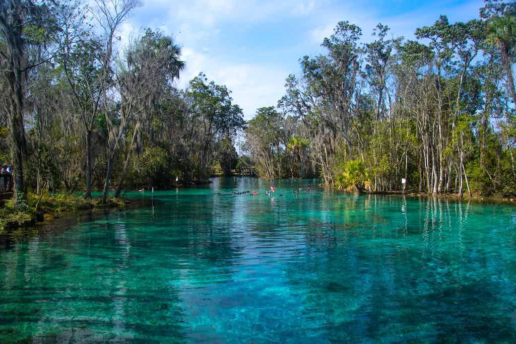 Crystal River National Wildlife Refuge, Florida