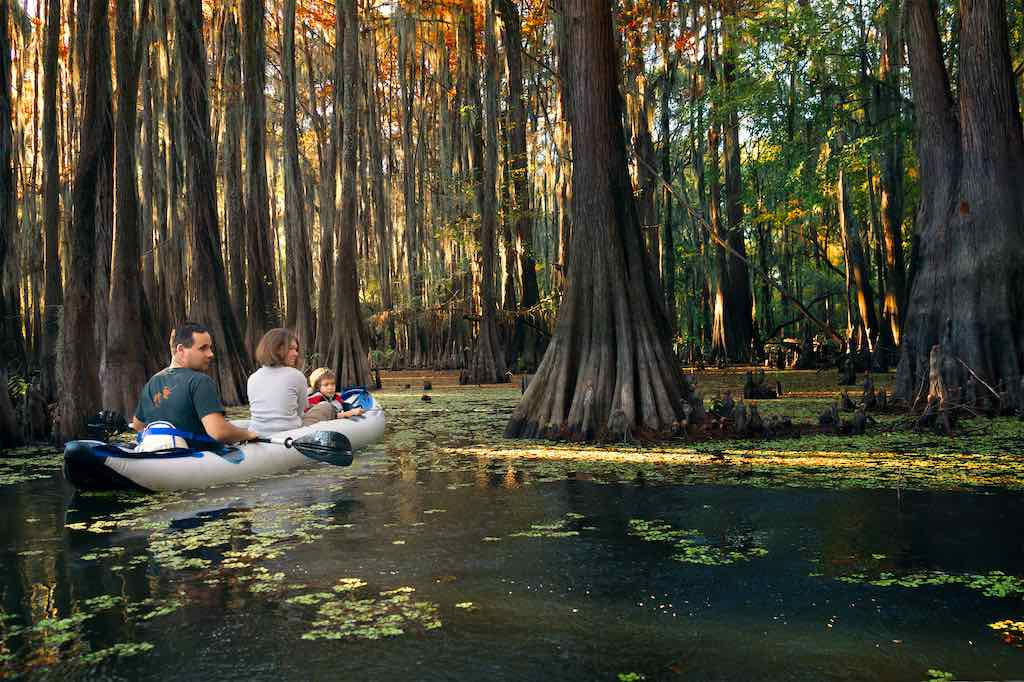Family in an inflatable boat floats among the cypresses. Caddo Lake State Park, Texas
