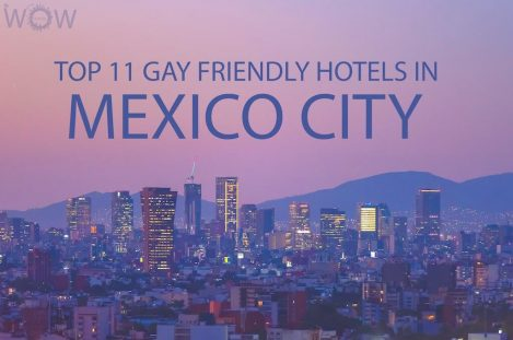 Top 11 Gay Friendly Hotels In Mexico City